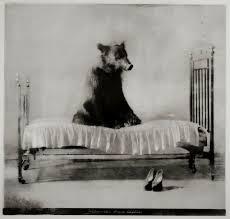 strang bed 3